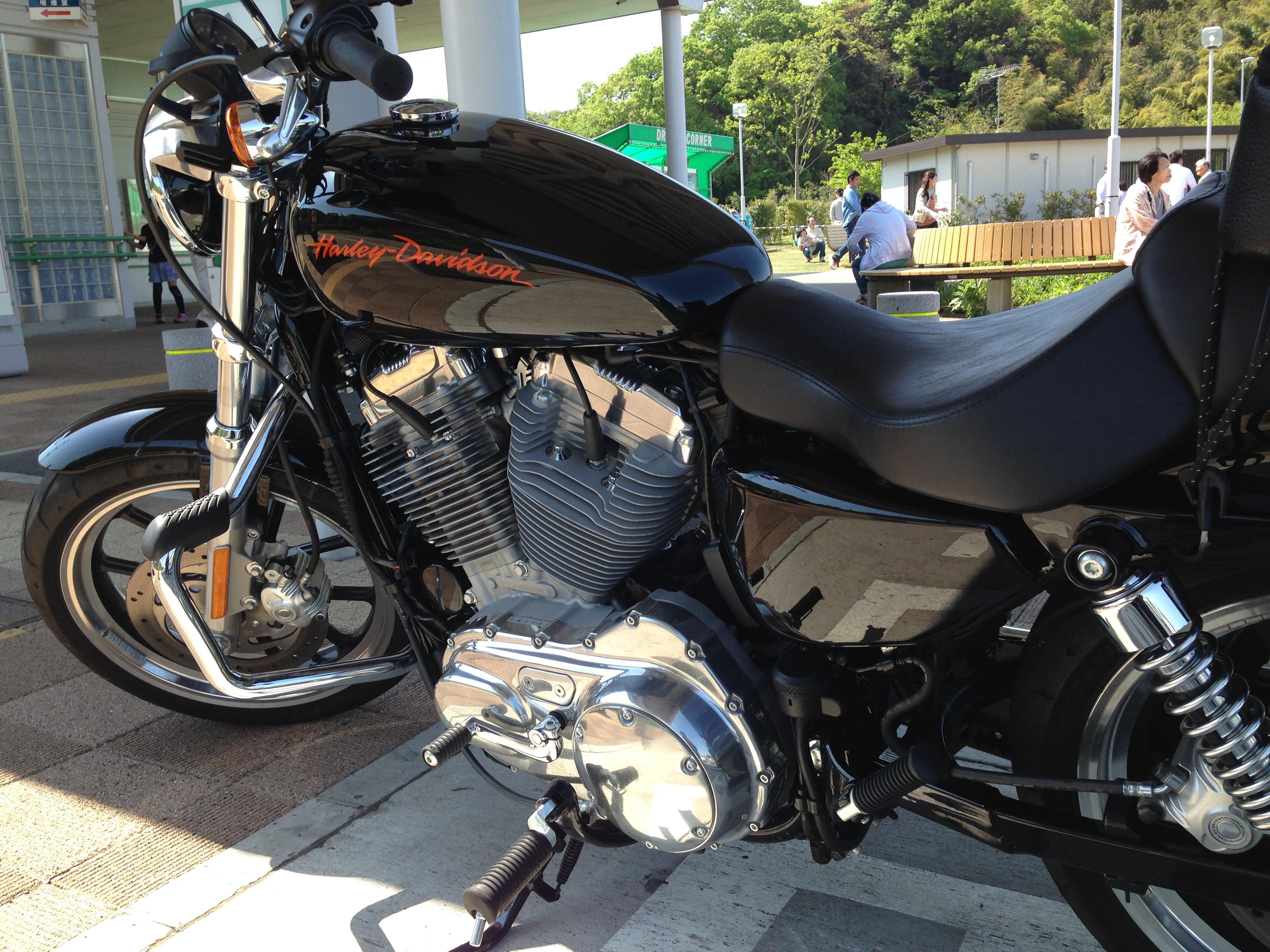 http://blog.corco.jp/corcovado/IMG_9083.JPG
