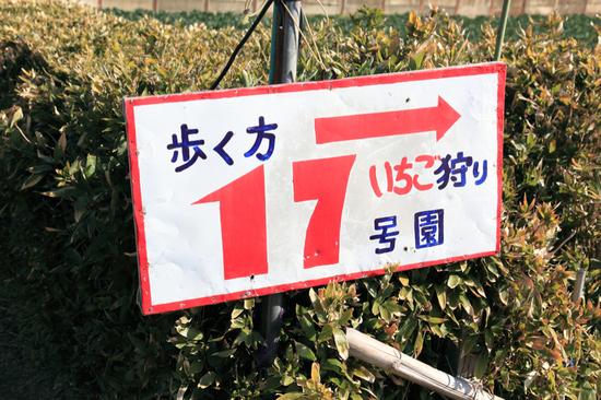 20100109_7519_910.jpg